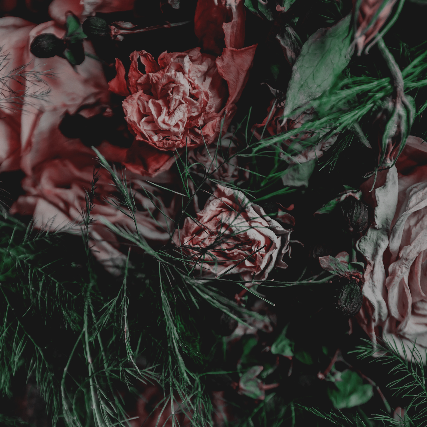 Green Red Moody Florals by KAESPO 003.jpg