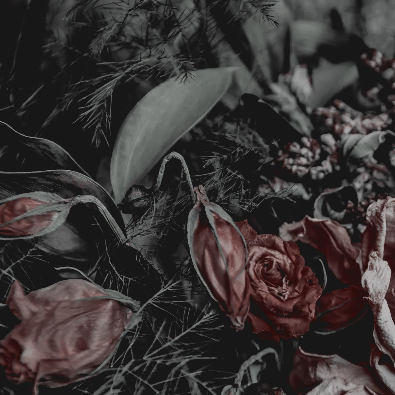 Green Red Moody Florals by KAESPO 001 alt 1.jpg