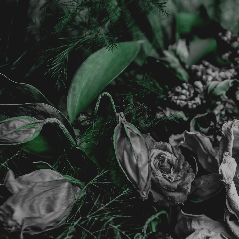 Green Red Moody Florals by KAESPO 001 alt 2.jpg