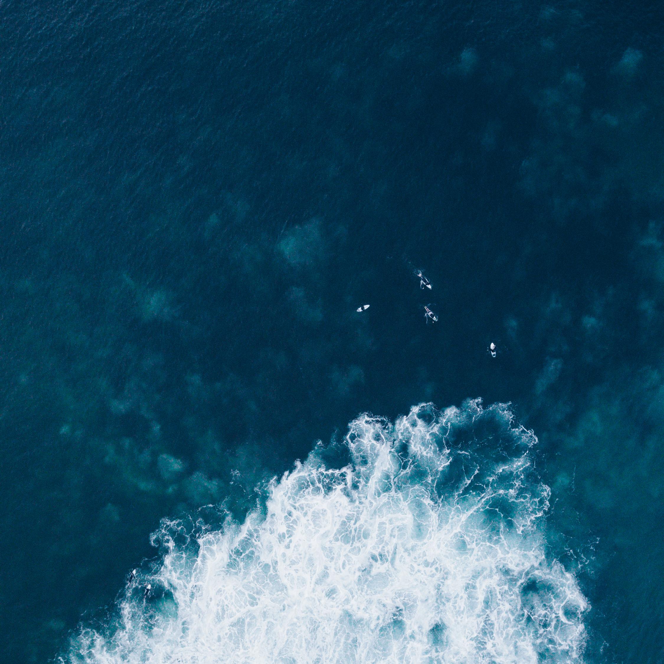 SOUTH SURF