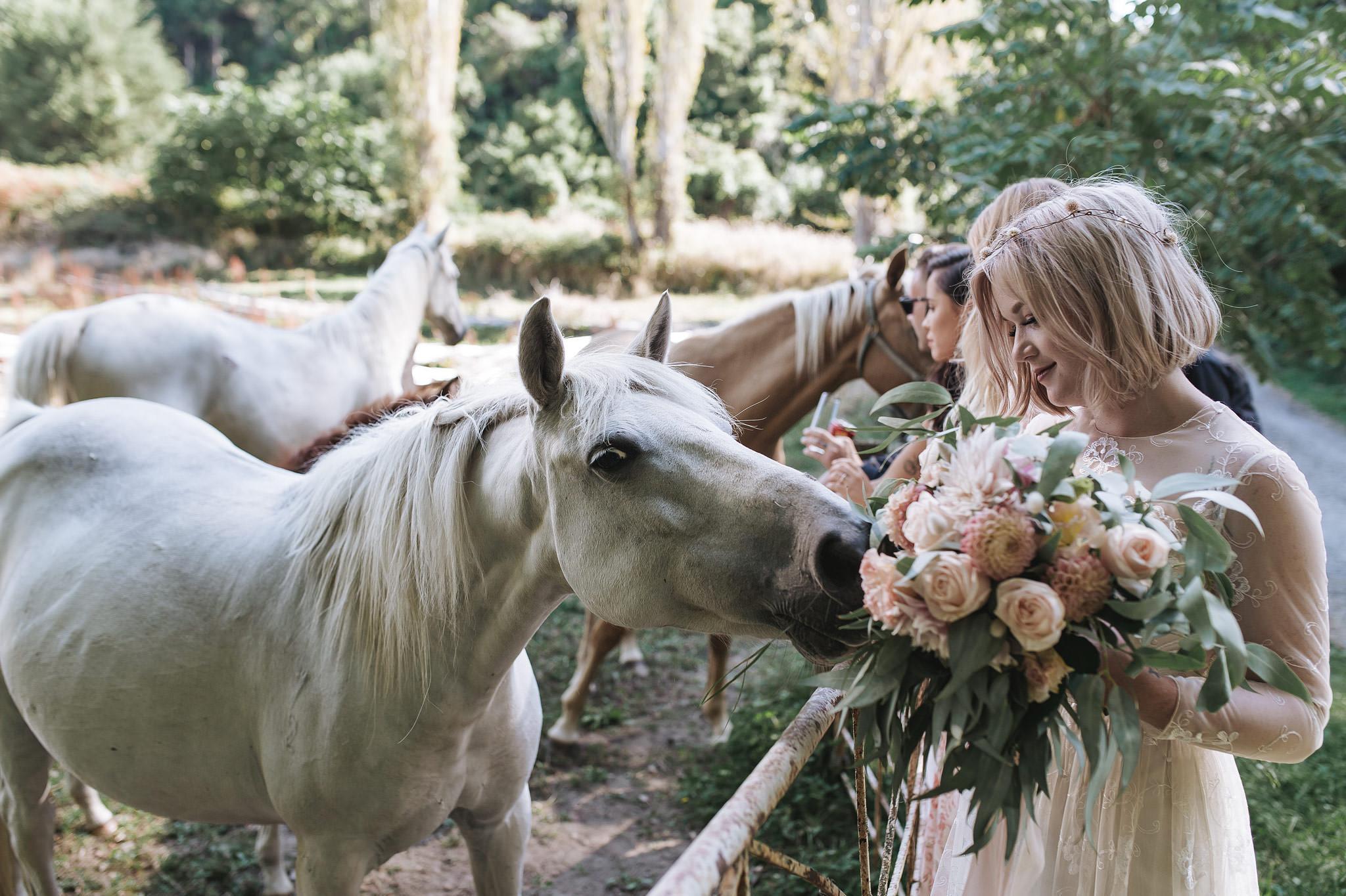 rambo-estrada-natalieryan-old-forest-school-tauranga-wedding-photographers-524-c-copy.jpg