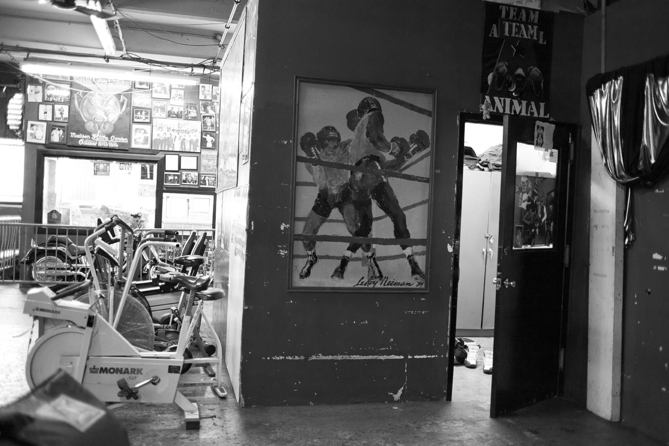 boxing_14.jpg