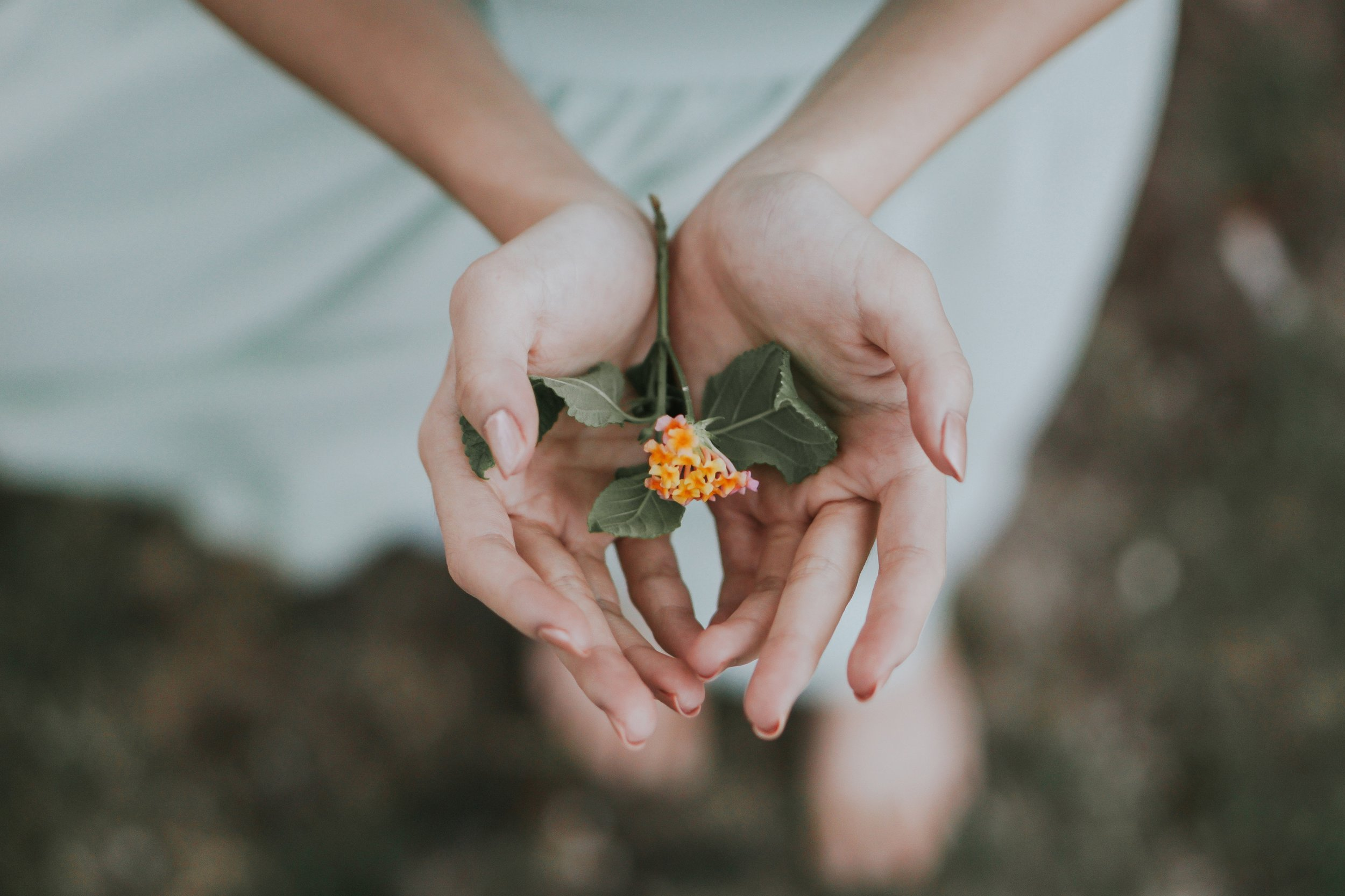 """- Beyond 2018, wellness will find itself a word by the wayside in favour of the umbrella term of """"self-care"""". Self-care encapsulates physical, mental, emotional and inner well-being."""