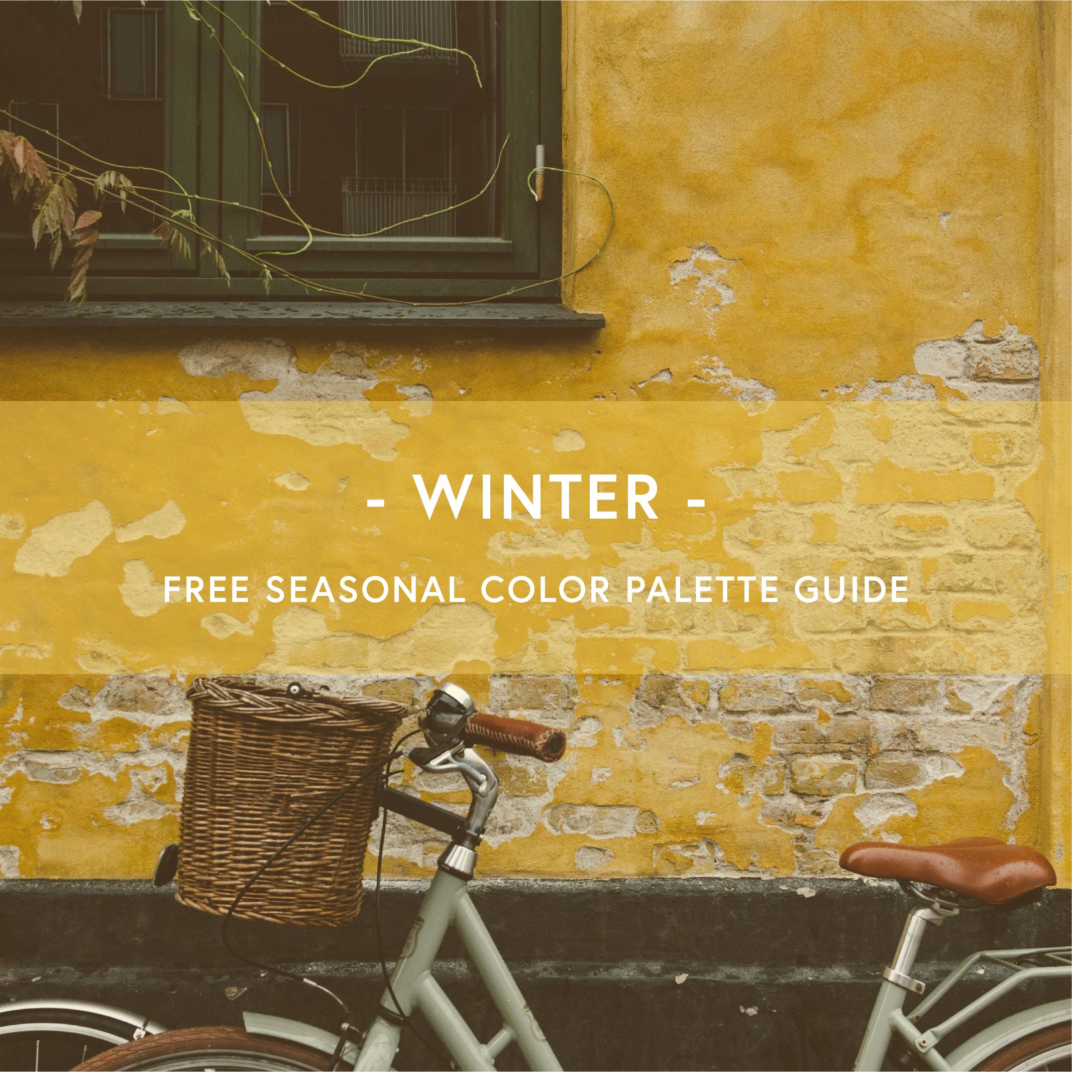 Winter-color-palette.png