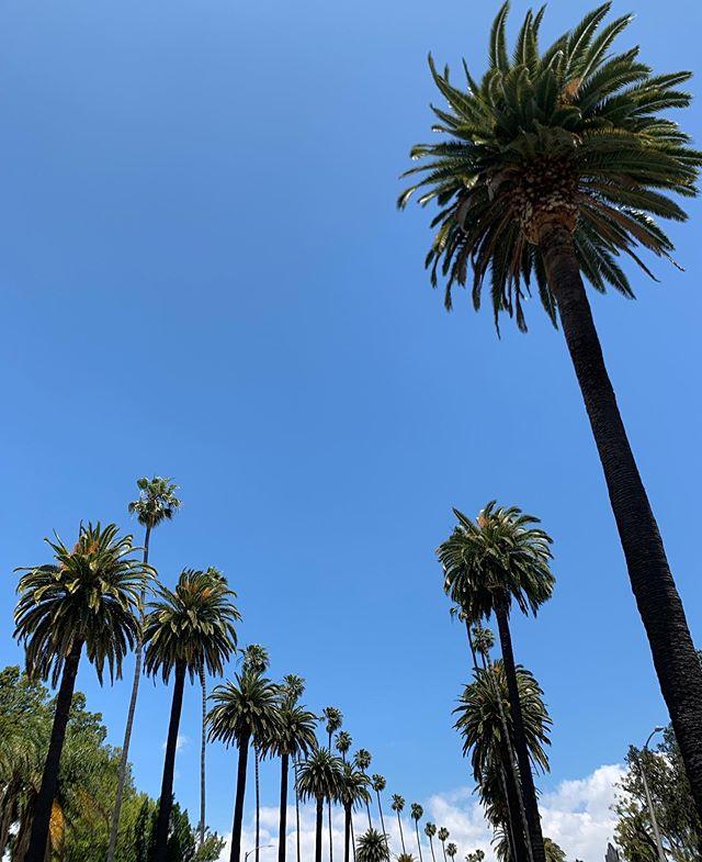 Bright blue #LA 💙