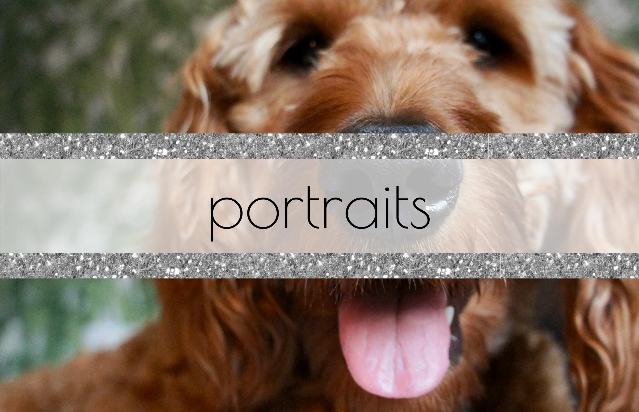 portraits pic-01.png
