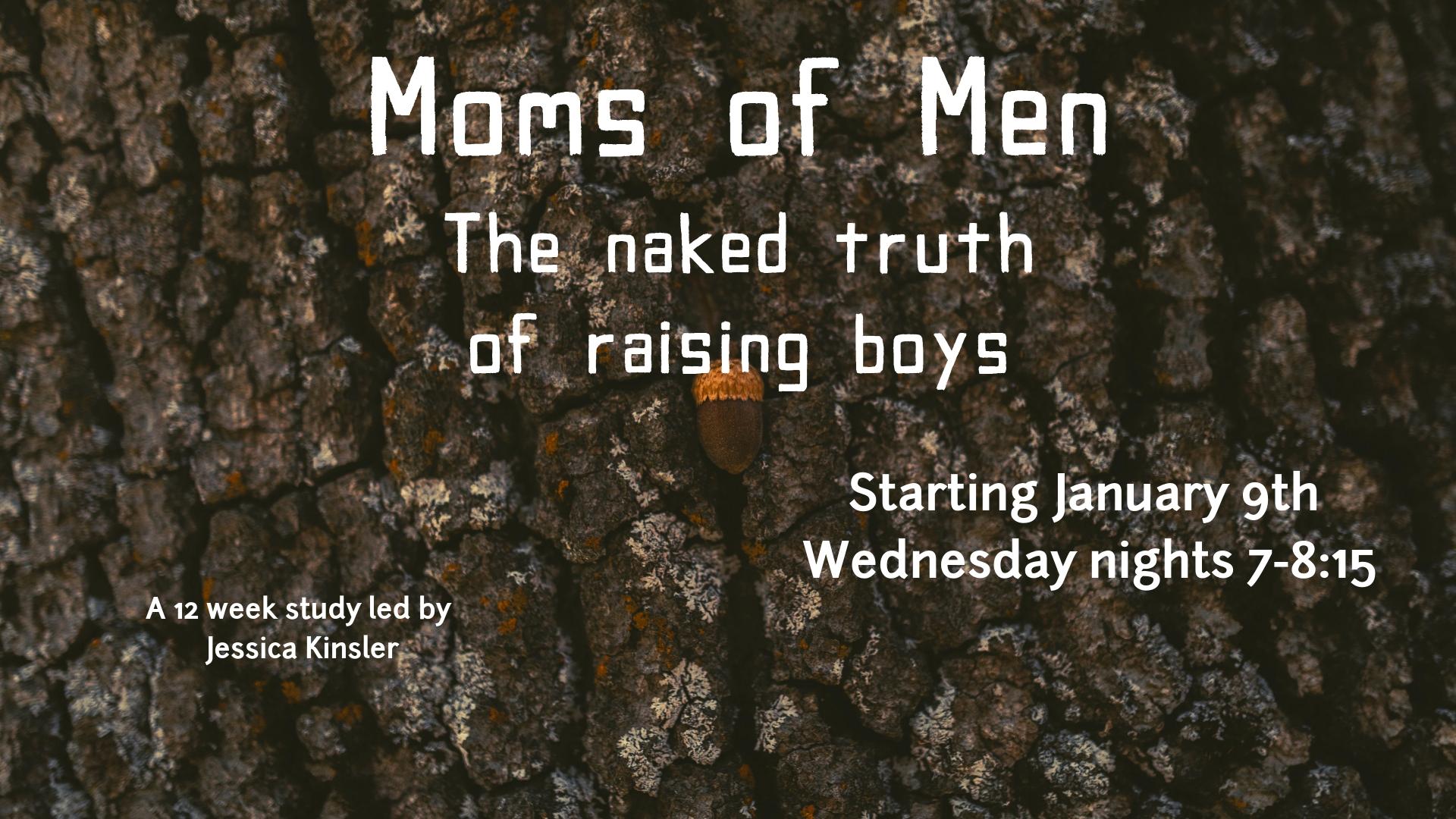 Moms of Men The naked truth of raising boys.jpg