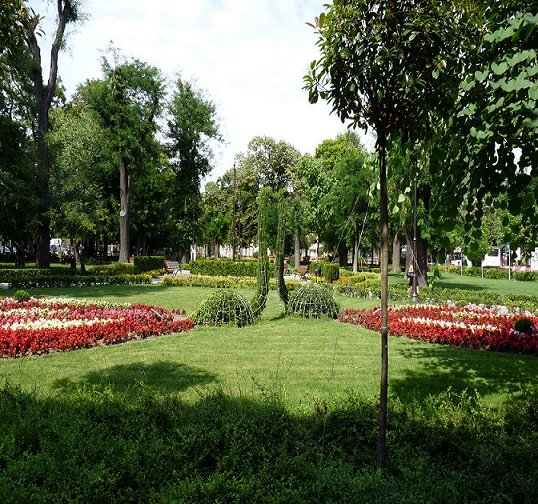 Varna city parc-flowers resized.png