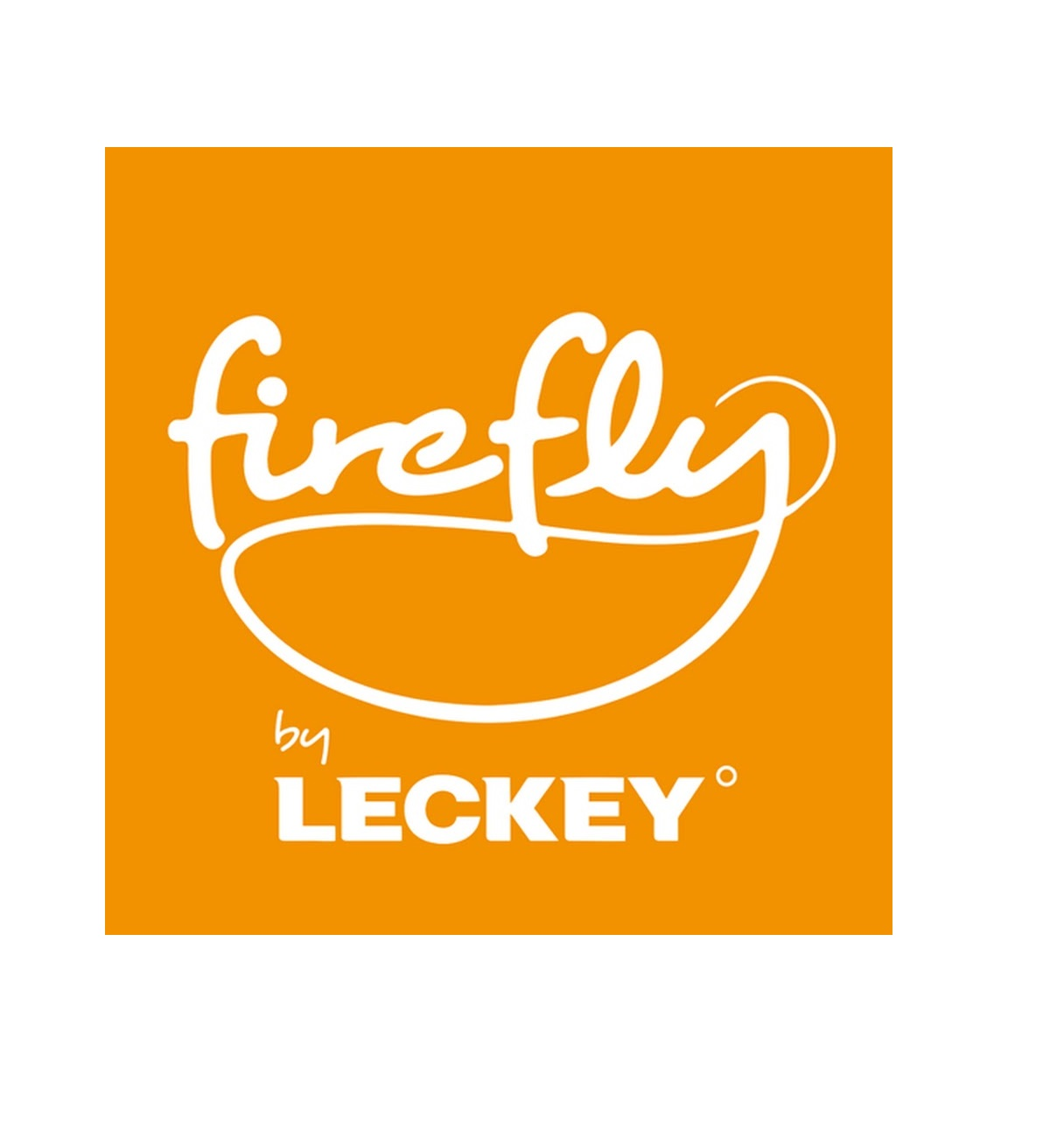 firefly by leckey.jpg