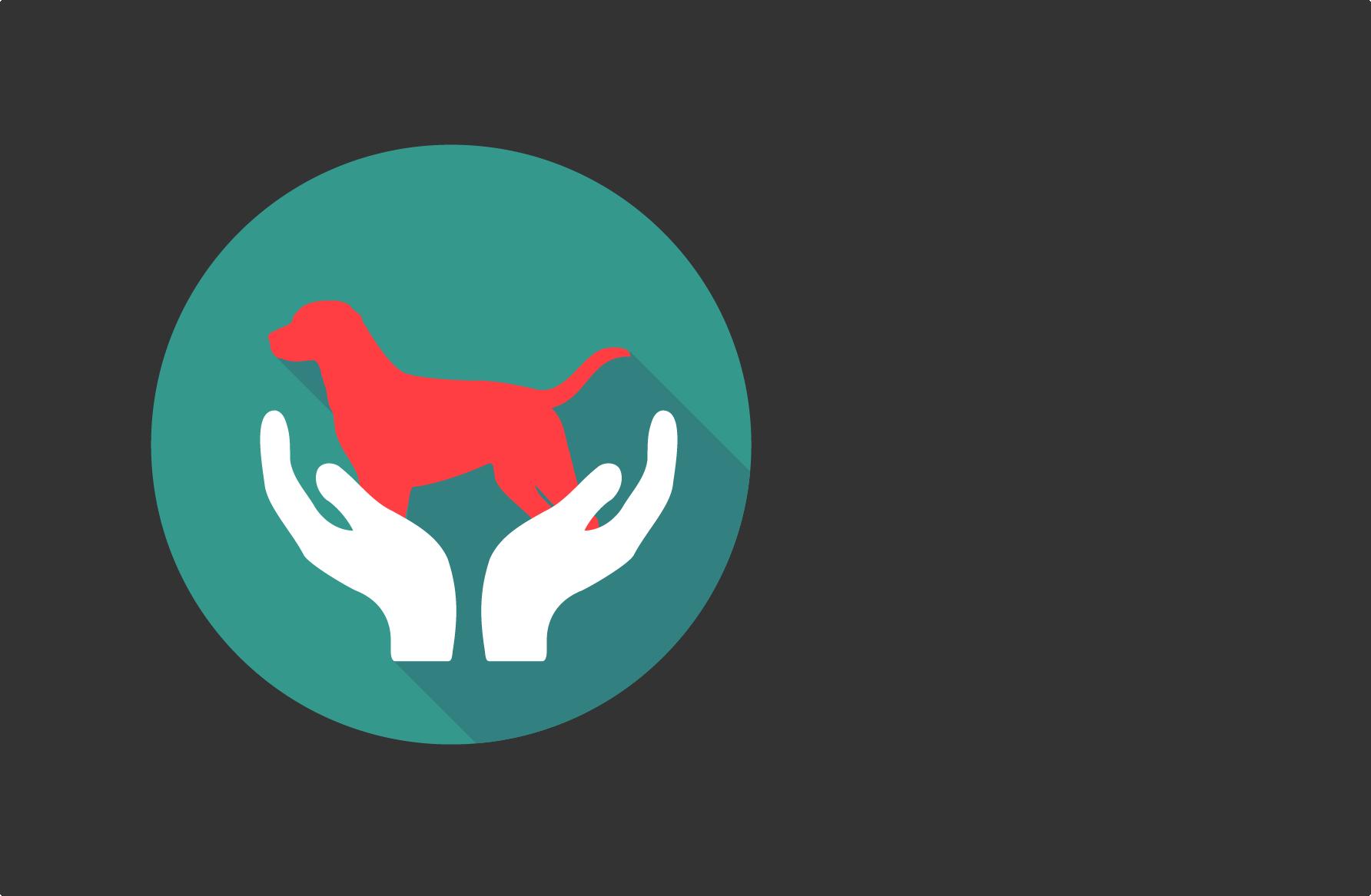 Analgésie Raisonnée - Une prise en charge médicale reposant sur les principes de l'Analgésie Raisonnée et Protectrice pour tenir compte de l'approche mécanistique de la douleur mais aussi de la vulnérabilité propre à chaque animal souffrant.