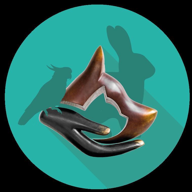 Logo-CapDouleur-NAC.png