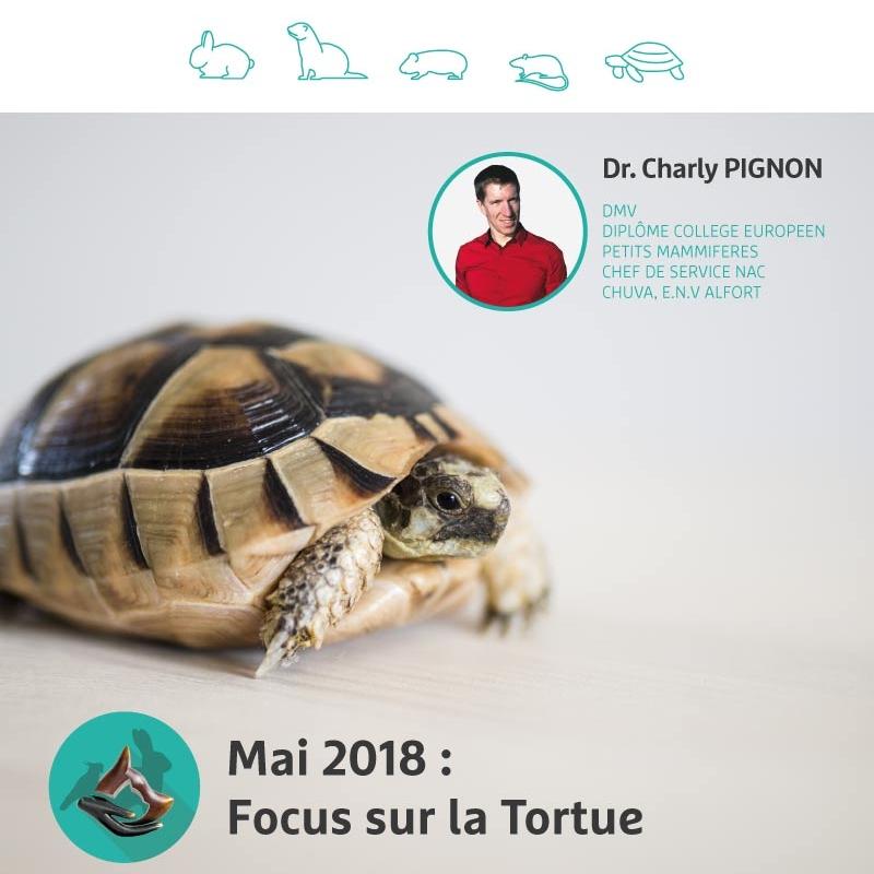 17 mai 2018 - Tableau de posologies chez la Tortue.
