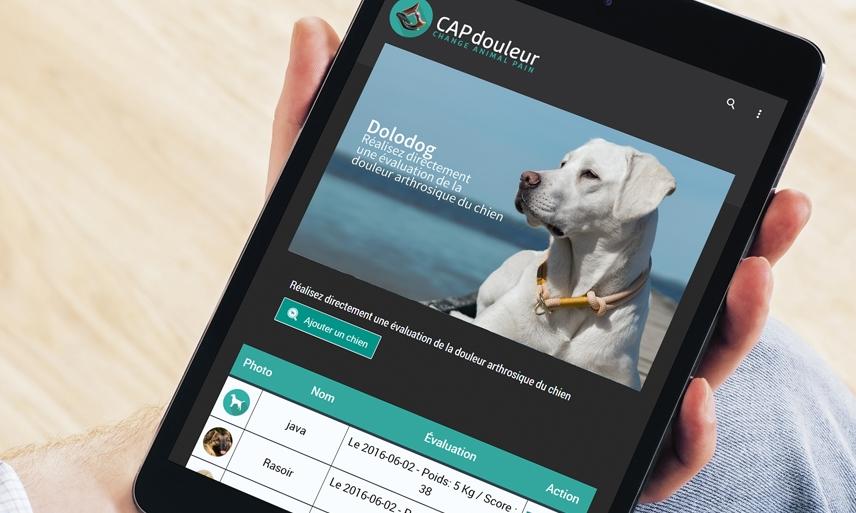 - Elle propose aux praticiens d'utiliser les data pour corriger leurs pratiques et pour se former : ils n'ont plus qu'à aller au bout de la démarche en l'insérant dans la 1ère blockchain vétérinaire digne de ce nom