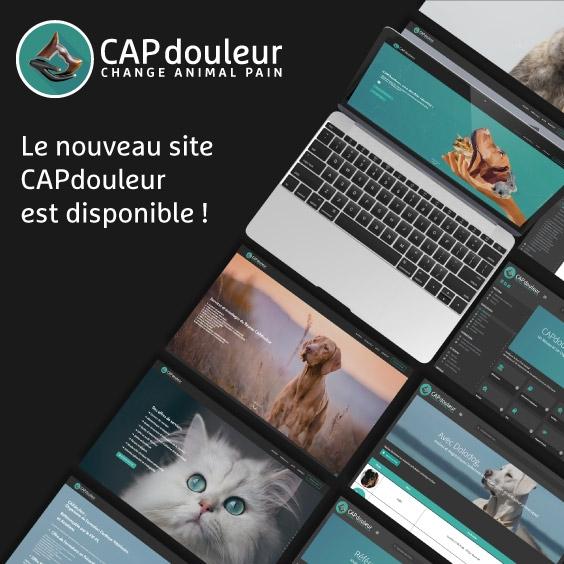 25 juin 2018 - Le nouveau site CAPdouleur.