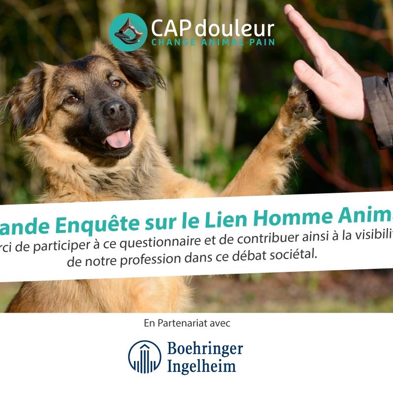 17 octobre 2017 - Enquête sur le Lien Homme - Animal.