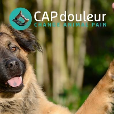 13 mai 2016 - Ouverture du réseau CAPdouleur.