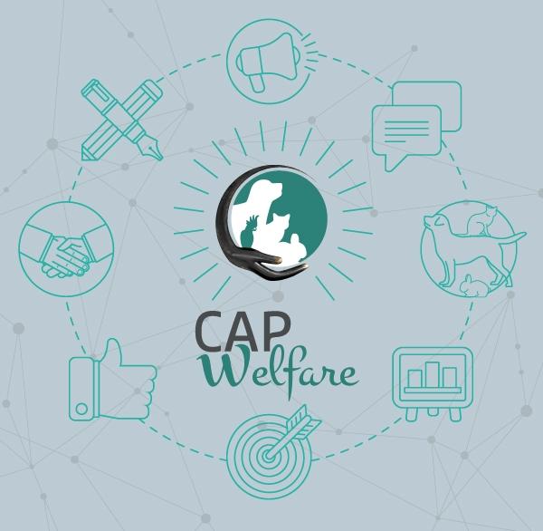 Résultats de l'enquête CAPwelfare - Merci d'avoir participé !