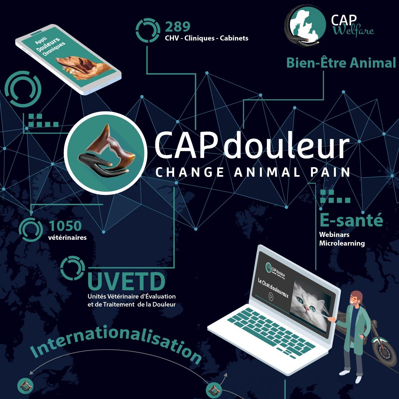 24 Décembre 2018 - Les meilleurs vœux de CAPdouleur