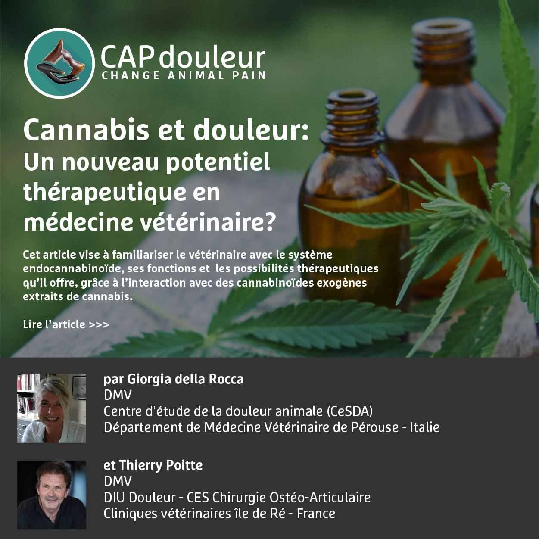 7 Janvier 2019 - Cannabis: Un nouveau potentiel thérapeutique en médecine vétérinaire?