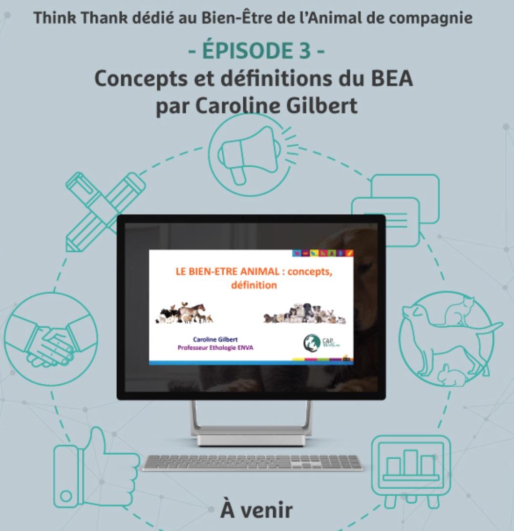25 Janvier 2018 - - ÉPISODE 3 -Concepts et définitions du BEA par Caroline Gilbert