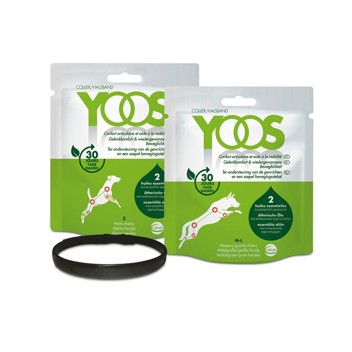 packs yoos (1).jpg