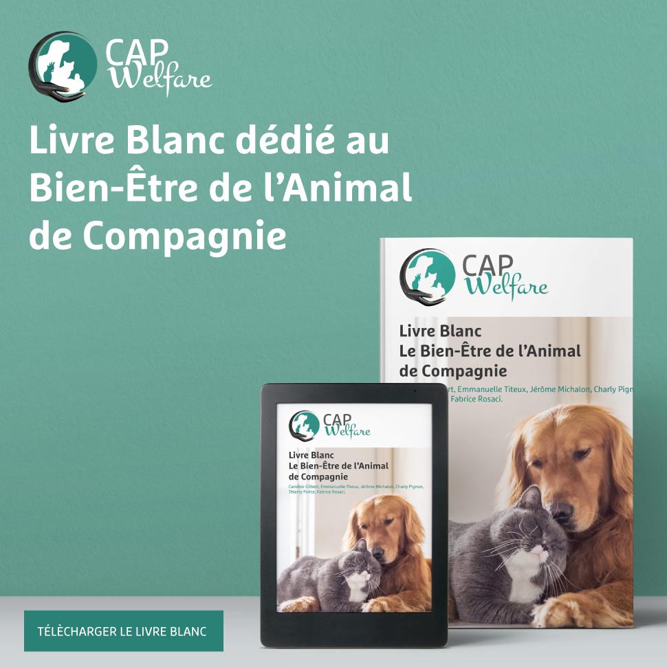 13 juin 2019 - Livre Blanc : Le Bien-être de l'Animal de Compagnie
