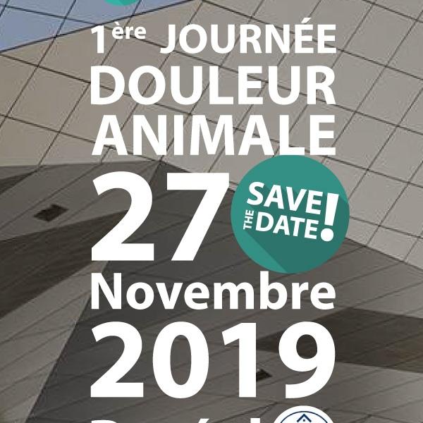 26 Juin 2019 - SAVE THE DATE ! 1ère Journée Douleur - 27 Novembre 2019