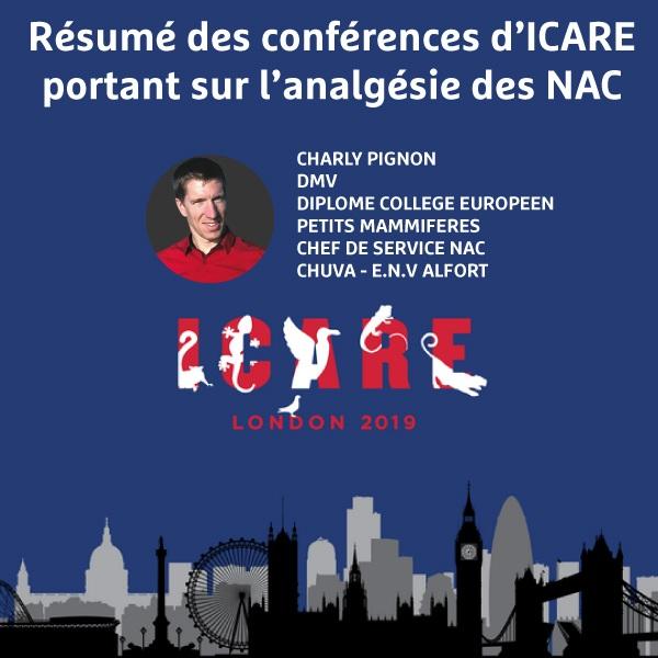 8 Aout 2019 - Résumé conférence ICARE
