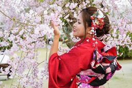 suibi cherry.jpg
