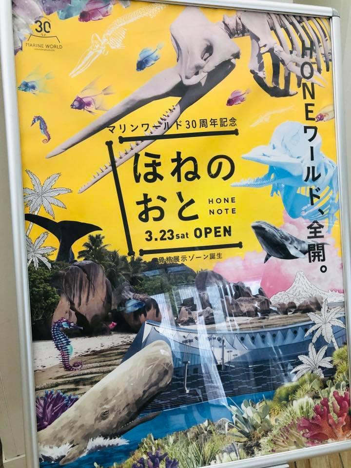 uminonakamachi park5.jpg