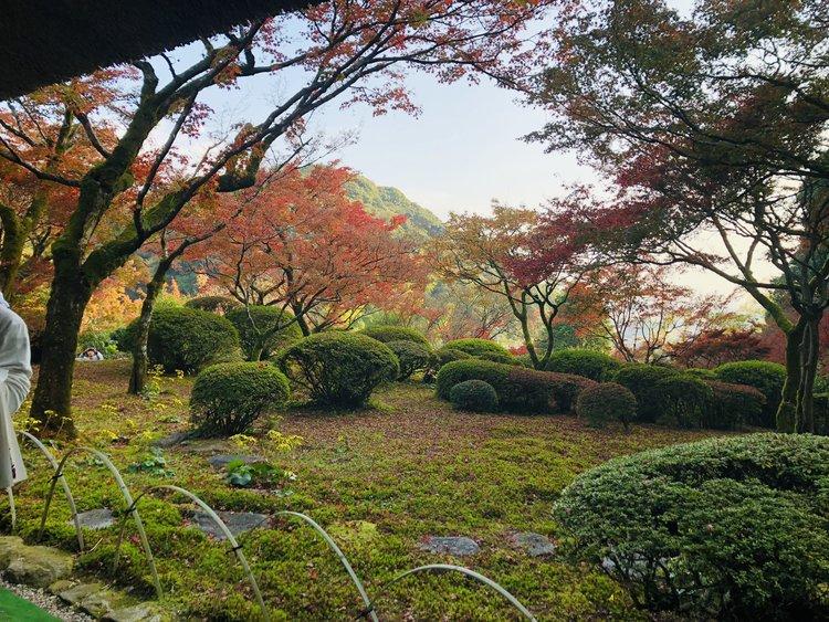 Autumn-leaf viewing spots in Saga Prefecture