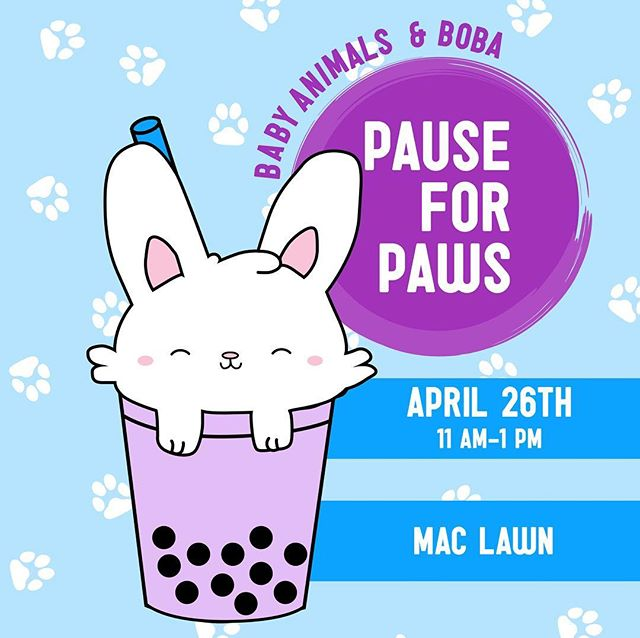 PAUSE FOR PAWS 🐾  boba. baby animals. need we say more?? come through mac lawn next friday!!