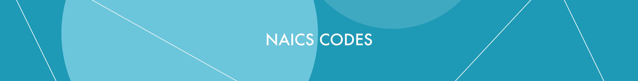 NaicsCode.png