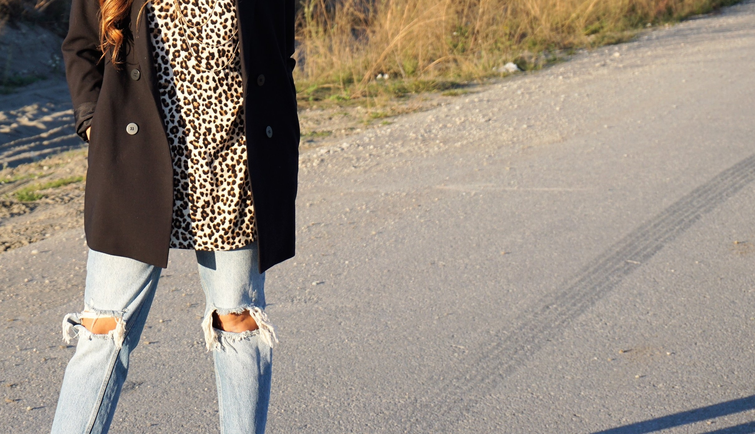 leopard...why not? -