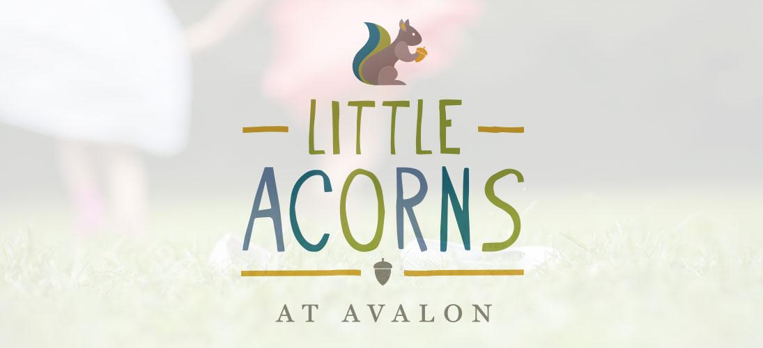 littleacorns_header_1095x500.jpg