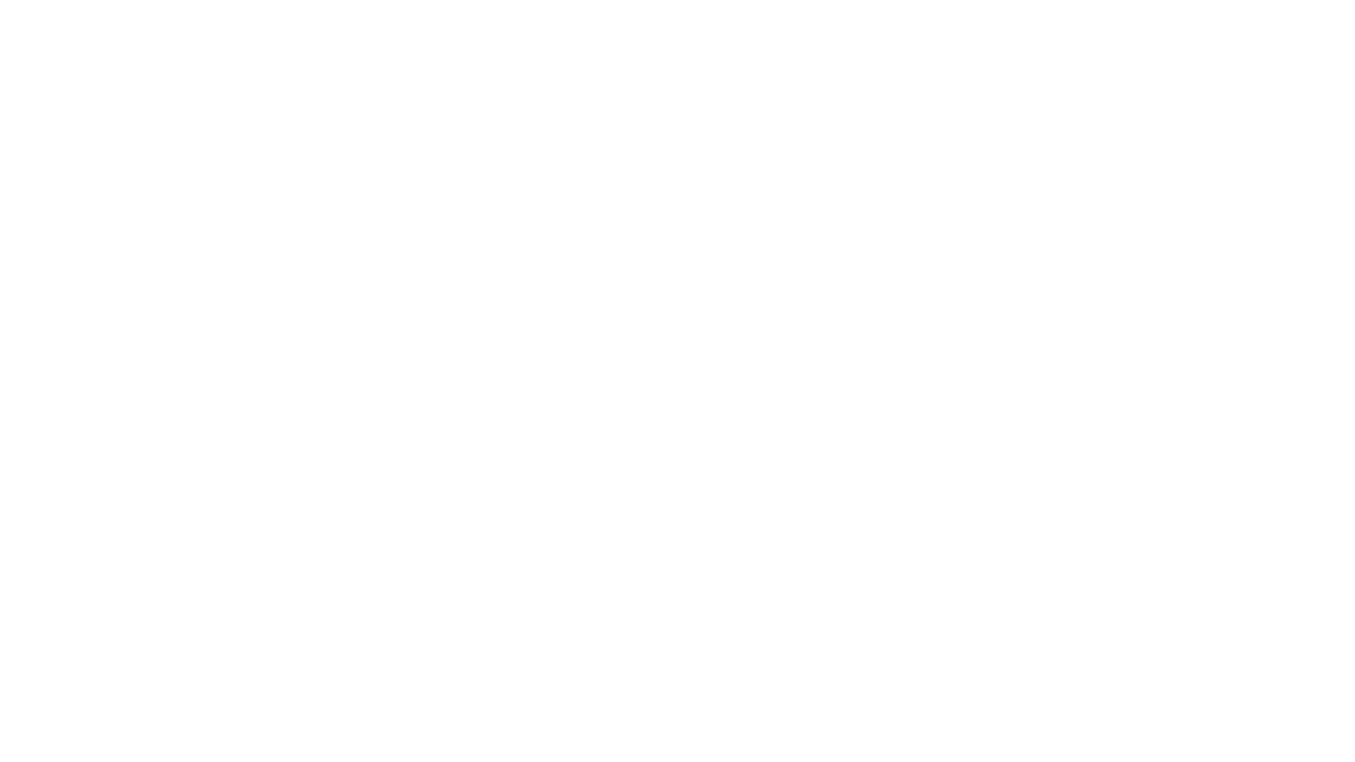 bear-transparent-whiteD10.png