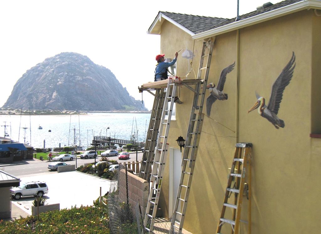 MarcieHawthorne,Artist Painting PelicansMural .jpg