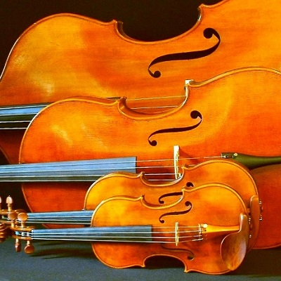 violin family 400x400.jpg
