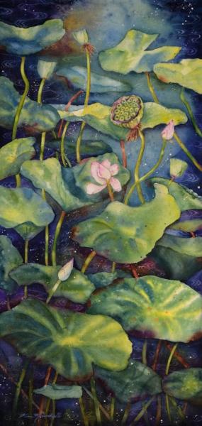 Lotus Nocturne