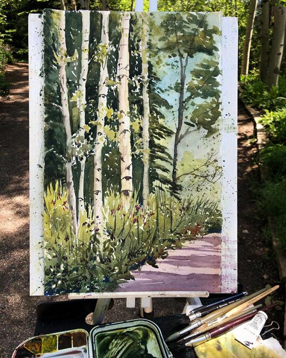 Aspen Trees, Watercolor, Painted en Plein Air at Yampa River Botanic Park