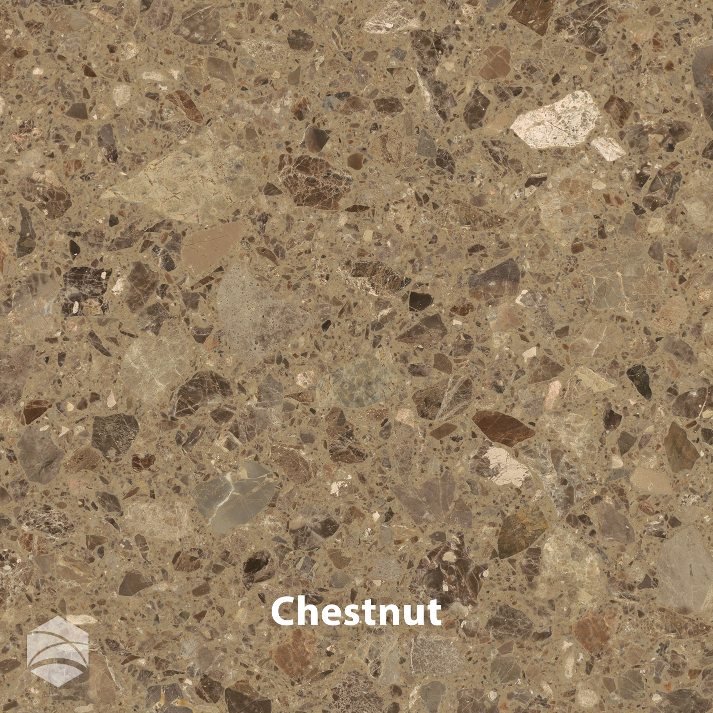 Chestnut_V2_14x14.jpg