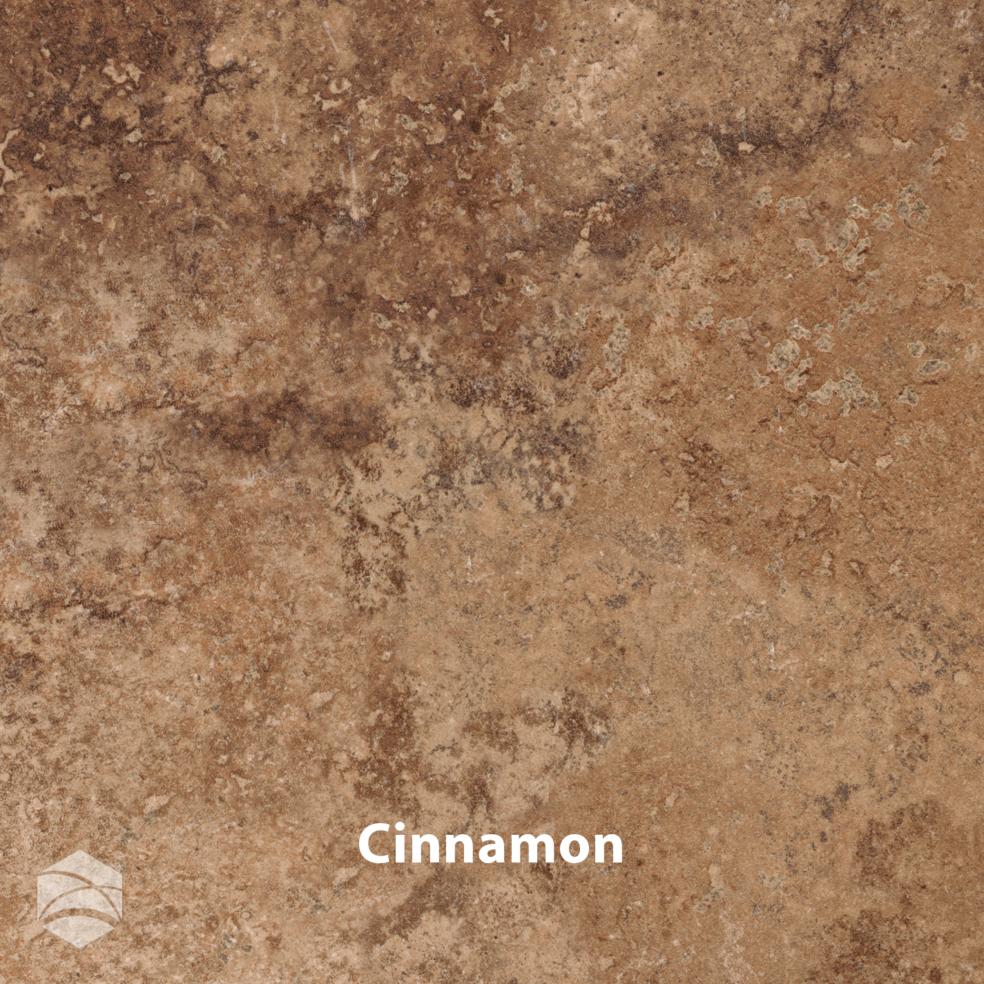 Cinnamon_V2_14x14.jpg