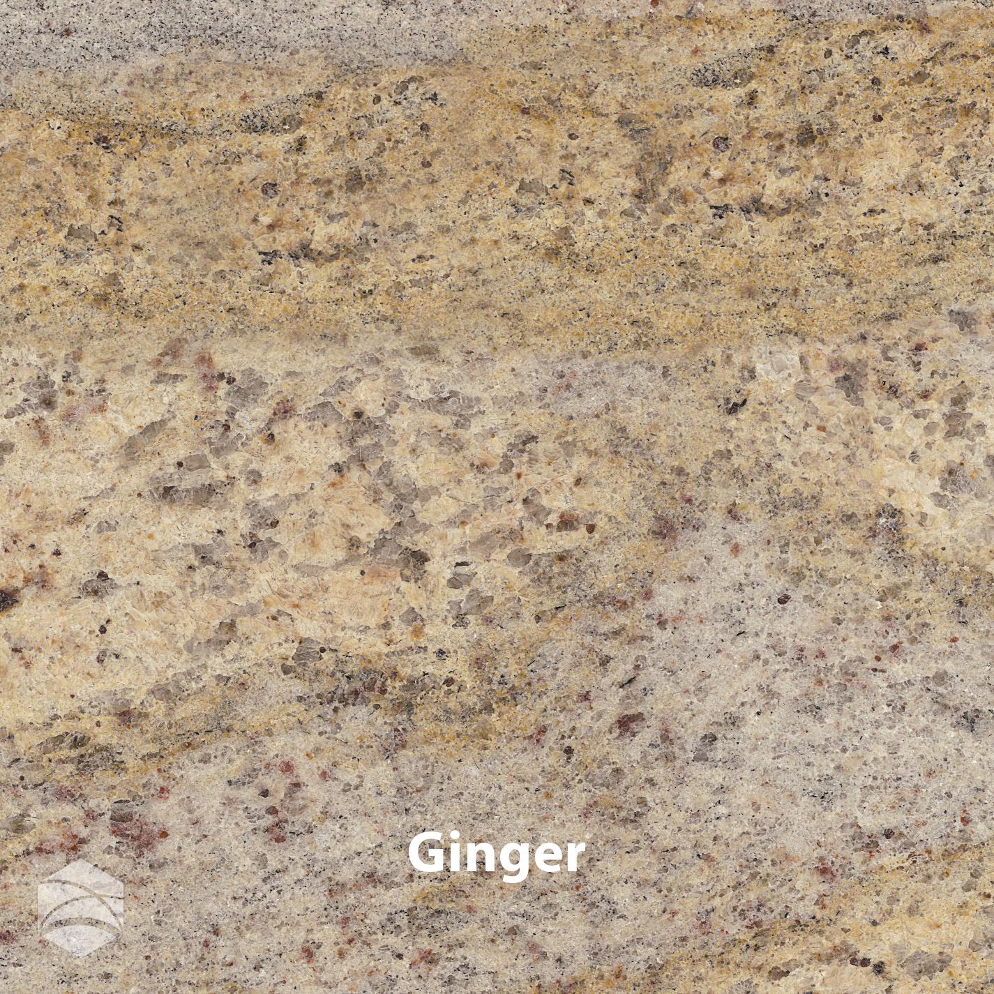 Ginger_V2_14x14.jpg