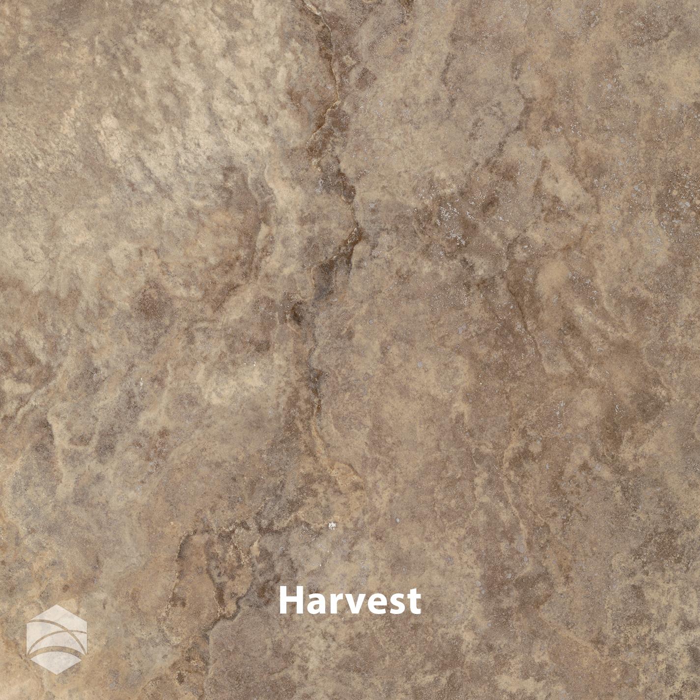 Harvest_V2_14x14.jpg
