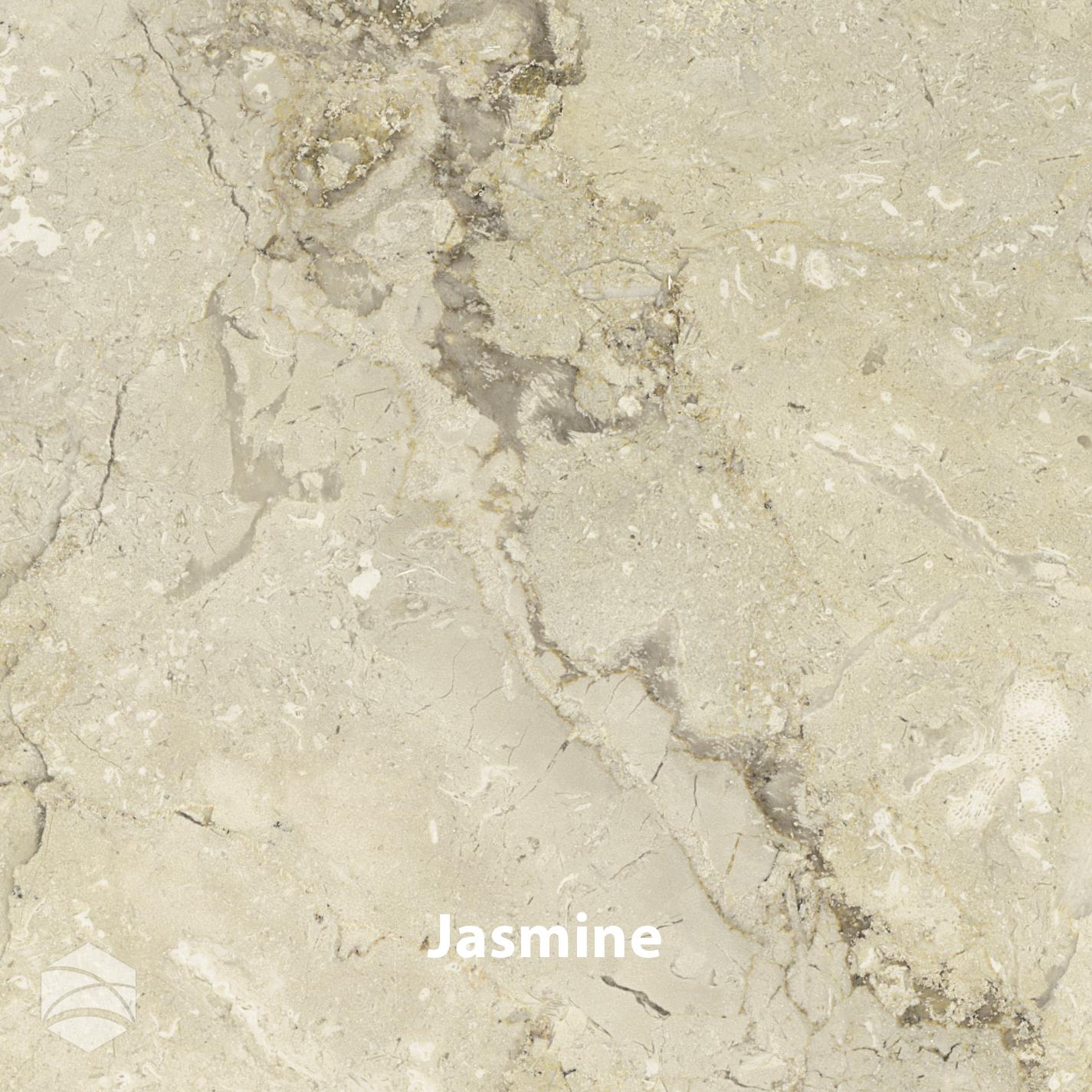 Jasmine_V2_14x14.jpg