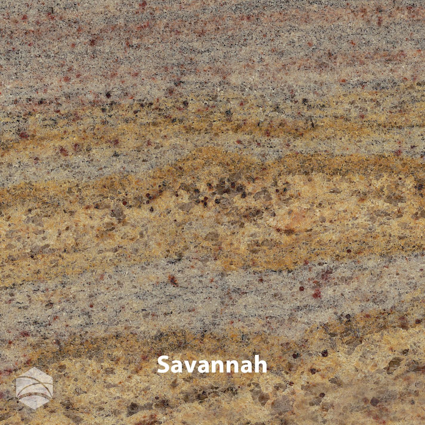 Savannah_V2_14x14.jpg