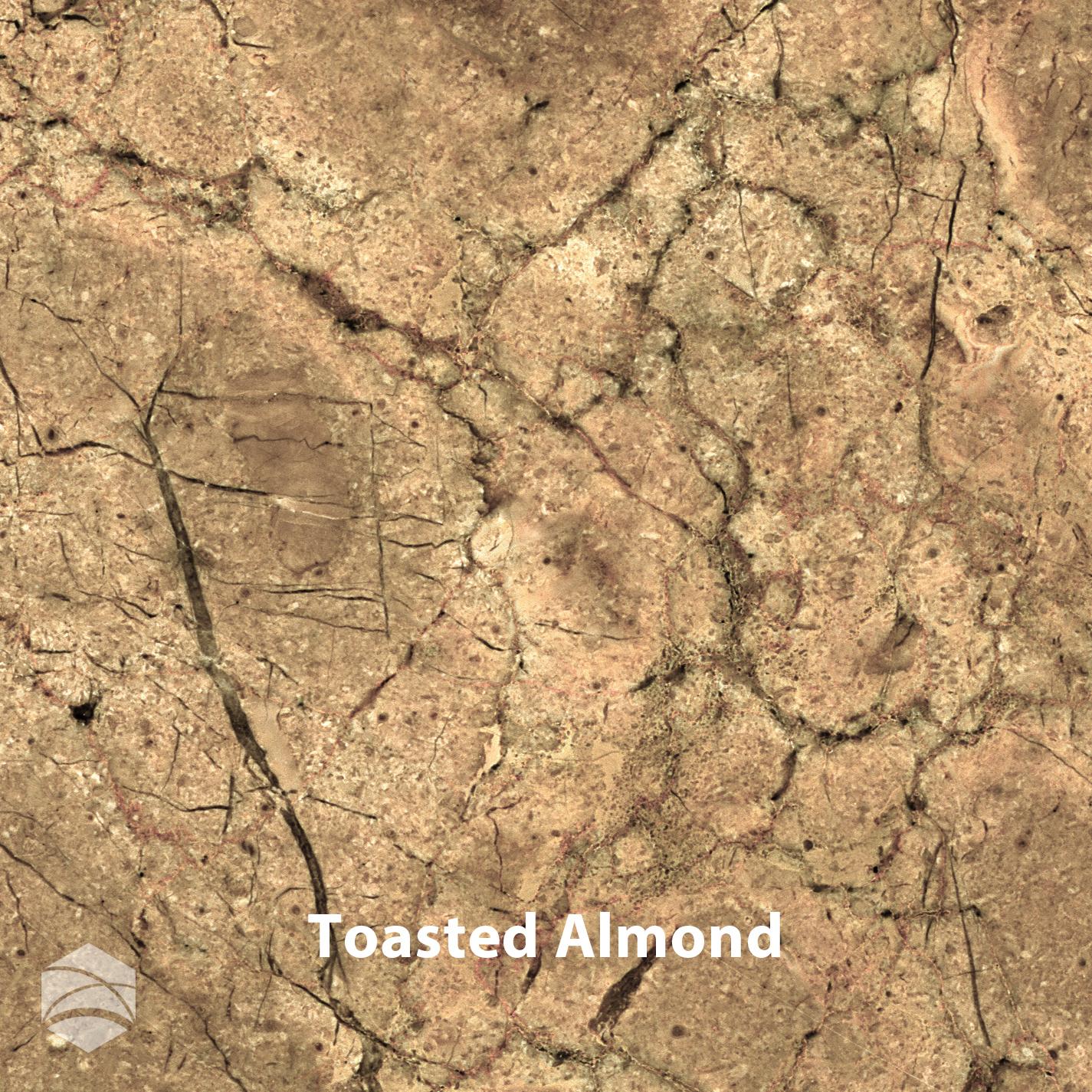 Toasted Almond_V2_14x14.jpg