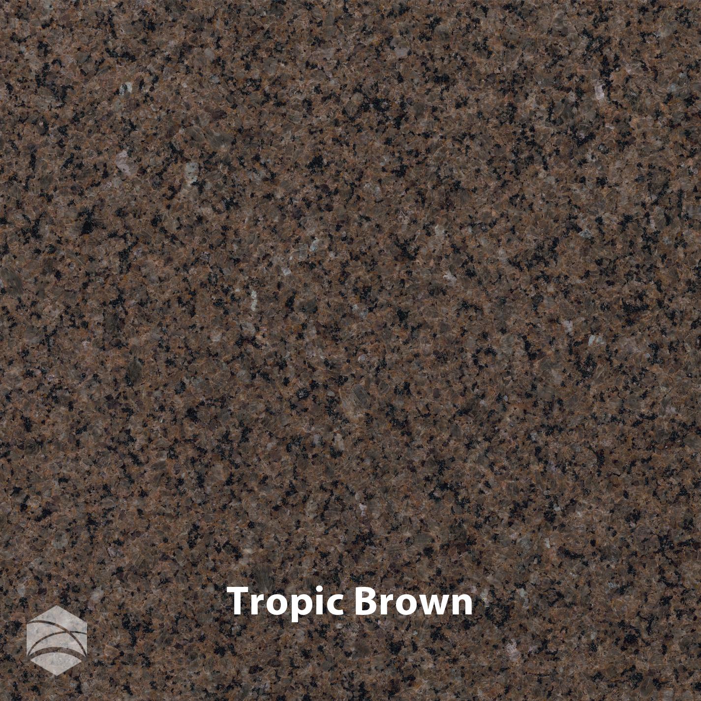 Tropic Brown_V2_14x14.jpg