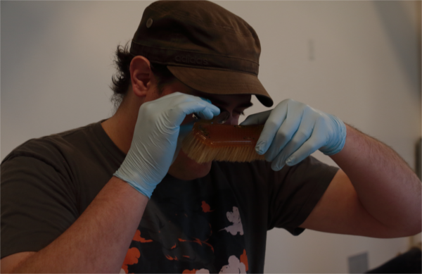 Examining a celluloid brush for  Ready to Roar.