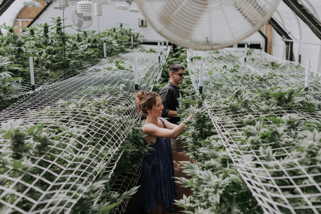 JENNIFER-SKOG-cannabis-farm-lifestyle_0093.jpg